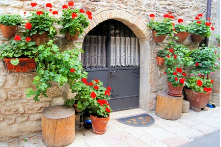 Colorful red flowers lining a medieval stone wall in Italy photo