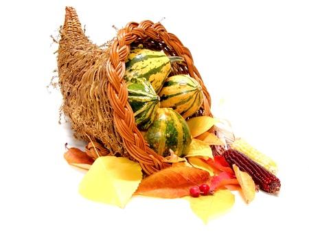 harvest cone cornucopia: Thanksgiving or harvest cornucopia on a white background