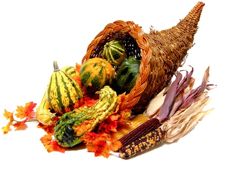 Thanksgiving or harvest cornucopia on a white background