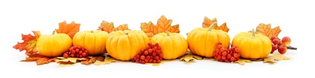 Autumn horizontal edge border of pumpkins and leaves photo