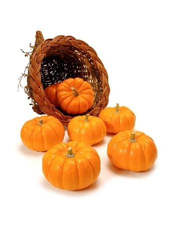 harvest cone cornucopia: Harvest or Thanksgiving cornucopia of pumpkins on a white background Stock Photo