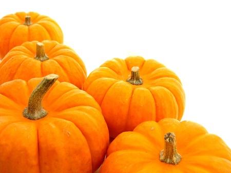 Autumn border of pumpkins over white