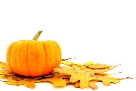 beautiful thanksgiving: Harvest pumpkin on a cluster of fallen leaves over white