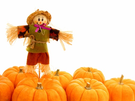 Harvest border of pumpkins with scarecrow over white photo