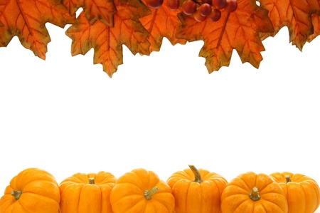 Double edge border of autumn leaves and pumpkins over white photo