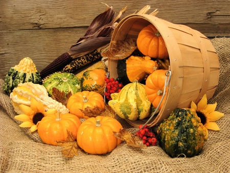 Harvest pail of spilling autumn gourds and pumpkins on burlap and with wood background photo