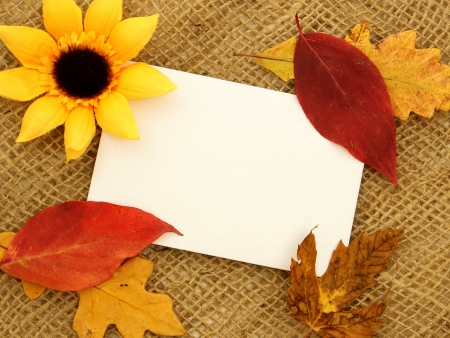 Blank greeting card on burlap with autumn leaves