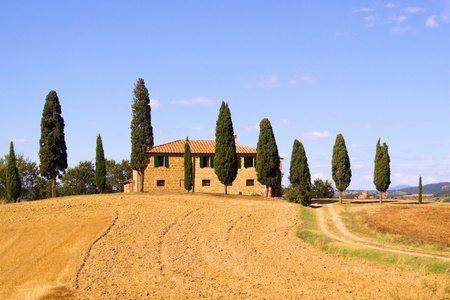 cypress tree: Classic Tuscan landscape with stone house and row of cypress trees Stock Photo