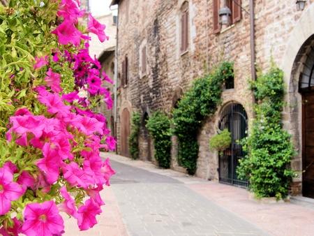 Flores a lo largo de una calle medieval en Asís, Italia Foto de archivo