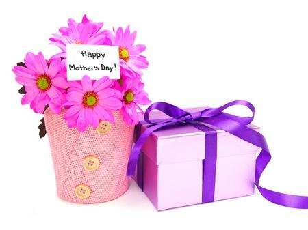 Moederdag cadeaus - pot roze margrieten en geschenkdoos Stockfoto - 13211512