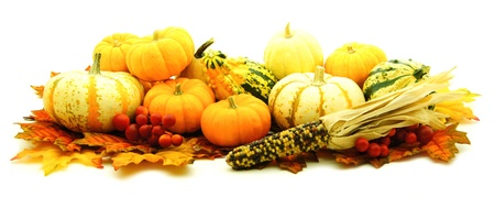Group of autumn pumpkins, gourds and corn over white photo