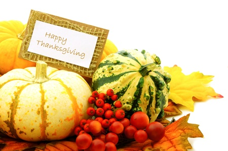 gourds: Happy Thanksgiving tag among a group of pumpkins, gourds and autmn leaves Stock Photo