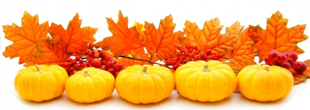 Border or edge of pumpkins and vibrant autumn leaves over white photo