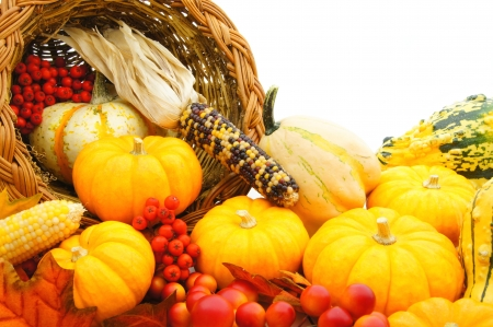 Close up of a harvest or Thanksgiving cornucopia of autumn vegetables photo