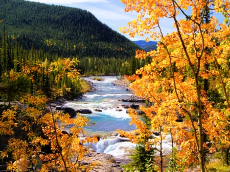 Mountain river view framed by yellow autumn leaves photo