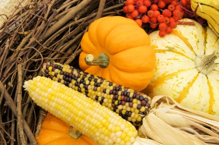 autumn colour: Downward view of a group of autumn pumpkins and corn in a wicker basket