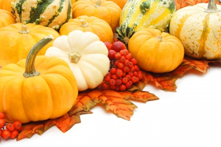 Corner arrangment of autumn pumpkins, leaves and gourds over white photo