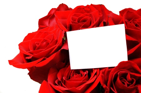 Blank card with room for text among a bouquet of beautiful red roses photo