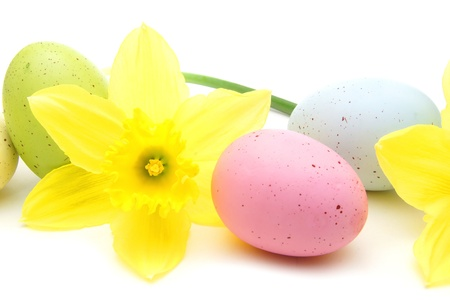 Close up of colorful Easter eggs and daffodil flowers over white photo