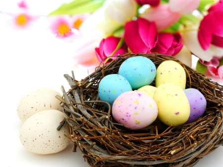 spotted: Springtime Easter nest with colorful spotted eggs over white