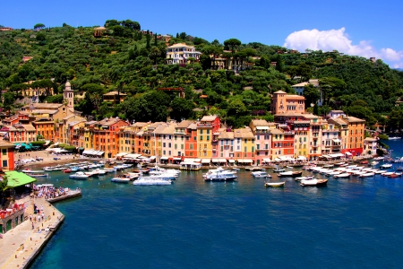 fishing scene: Aerial view over the famous fishing village of Portofino, Italy