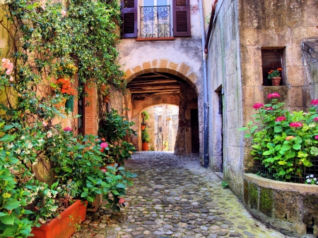 arched: Arched cobblestone street in a Tuscan village, Italy Stock Photo