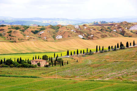 House and cypress lined road among the fields of Tuscany, Italy Stock Photo - 21432986