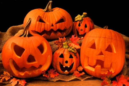Group of Halloween Jack o Lanterns and decor with black background photo