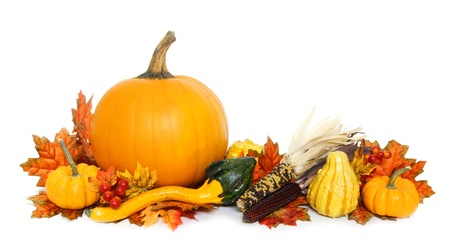 Autumn arrangement of pumpkins and gourds with red leaves over white photo