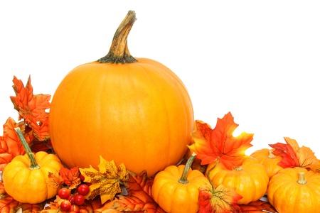 autumn arrangement: Autumn arrangement of pumpkins with red leaves over white Stock Photo