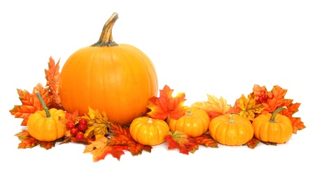 Autumn arrangement of pumpkins with red leaves over white photo