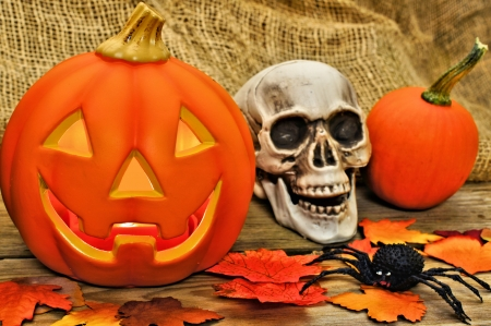 Halloween and autumn decor with skull and jack o lantern photo