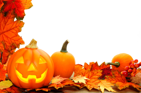 multicolor lantern: Halloween Jack o Lantern and leaf border with white background