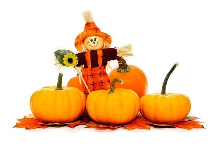 autumn scarecrow: Autumn scarecrow among pumpkins and leaves over a white background