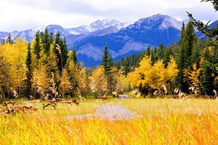 pic nic: Vibrant colors of the Canadian Rockies during autumn Stock Photo