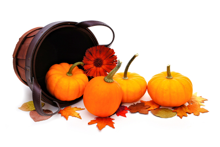 Harvest basket with spilling pumpkins on a white background photo