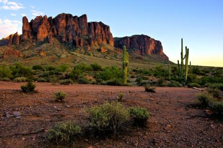 plantas del desierto: Vista de las montañas de la superstición a través del desierto de Arizona al atardecer Foto de archivo
