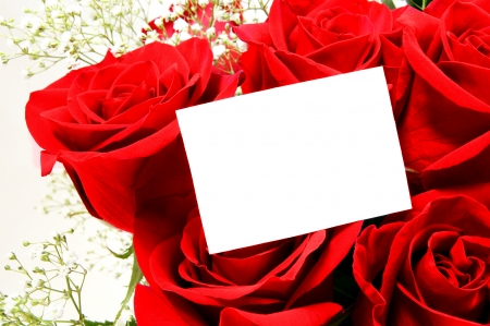 Blank greeting card among group of red roses photo