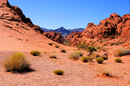 Nevada desert, Valley of Fire State Park, USA photo