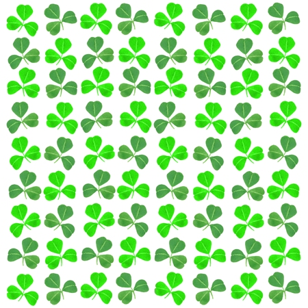 St Patricks Day shamrock background photo