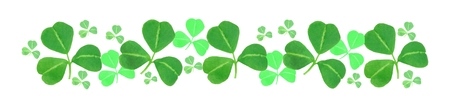 St Patricks Day shamrock border over white photo