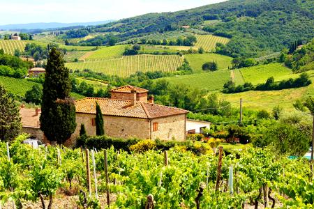 Bekijk door de wijngaarden met stenen huis, Toscane, Italië
