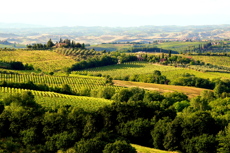 toscana: View over the countryside of Tuscany, Italy near sunset