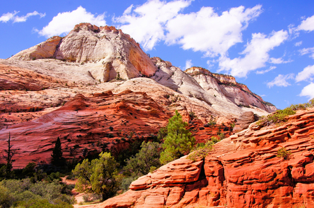 rock formation: Colorful peaks of Zion National Park, USA