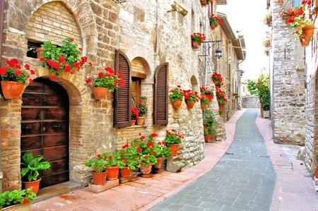 イタリアの丘の町の花と美しいレーン