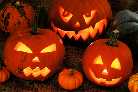 jack up: Halloween night scene with a group of glowing Jack o Lanterns Stock Photo