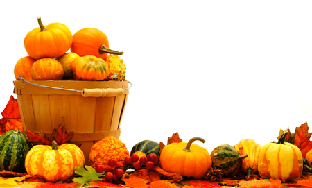 pumpkin border: Harvest basket, autumn pumpkin and vegetable border Stock Photo