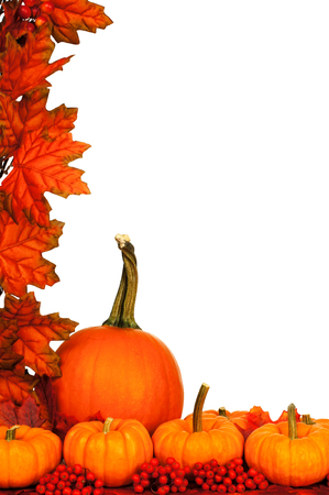 thanksgiving background: Vertical autumn corner border with pumpkins and red leaves over white Stock Photo
