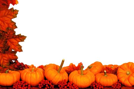 pumpkin border: Autumn corner border of pumpkins and red leaves