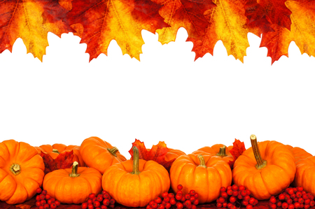 Autumn frame of pumpkins and vibrant leaves isolated on white photo
